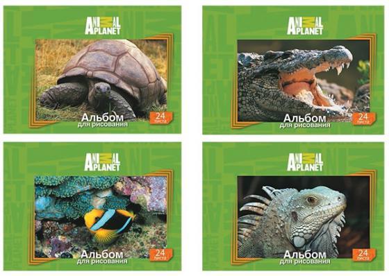 Альбом для рисования Action! ANIMAL PLANET A4 24 листа AP-AA-24 в ассортименте AP-AA-24 альбом для рисования action animal planet на гребне 40 листов в ассортименте