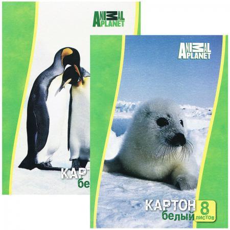 Набор белого картона Action! ANIMAL PLANET A4 8 листов AP-AWP-8/8 в ассортименте цена и фото