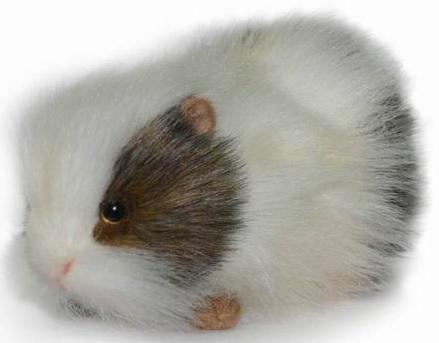 цена на Мягкая игрушка морская свинка Hansa Морская свинка 20 см белый серый искусственный мех синтепон 4392