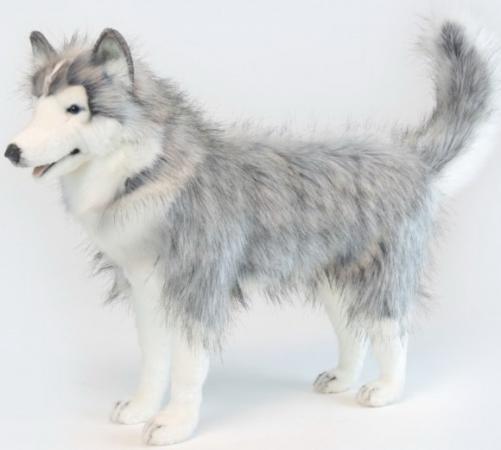 где купить Мягкая игрушка собака Hansa Хаски серый 75 см серый искусственный мех синтепон 6034 по лучшей цене