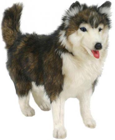 Мягкая игрушка собака Hansa Собака породы Сибирский Хаски 40 см белый коричневый синтепон искусственный мех 4824 мягкие игрушки hansa собака породы сибирский хаски 40 см