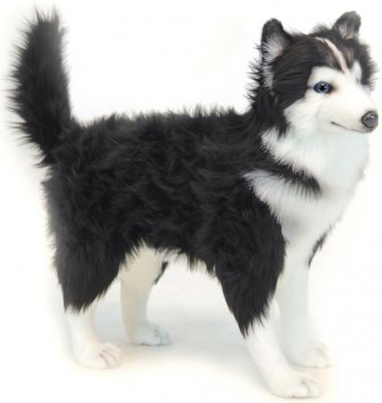 Мягкая игрушка собака Hansa Хаски чёрно-белая 56 см белый черный искусственный мех синтепон 6495 мягкая игрушка собака hansa хаски 75 см белый коричневый синтепон искусственный мех 6031