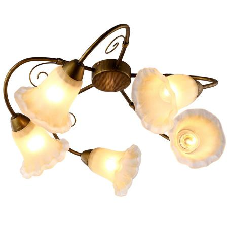 Потолочная люстра Arte Lamp 79 A9361PL-5BR