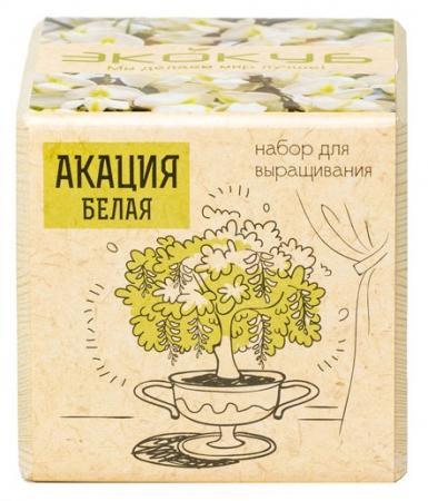 Набор для выращивания ЭКОКУБ Акация ECB-01-10 набор для выращивания ecocube разные растения акация