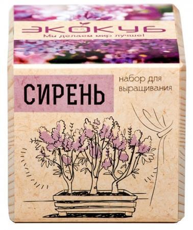 Набор для выращивания ЭКОКУБ Сирень ECB-01-06 electrical control box ecb 300 10hp