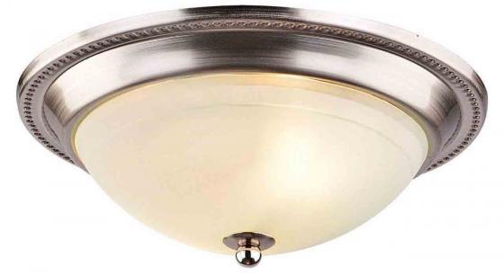 Купить Потолочный светильник Arte Lamp 28 A3011PL-2SS