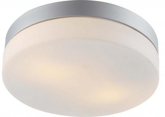 Потолочный светильник Arte Lamp Shirp A3211PL-2SI потолочный светильник arte lamp shirp a3211pl 3wh