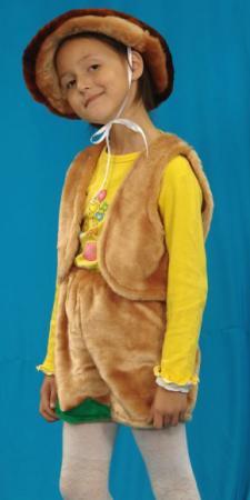 Карнавальный костюм Костюмы Гриб в ассортименте К-006