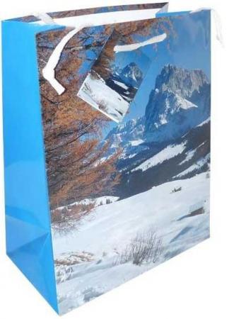 Пакет подарочный Winter Wings N13106/A 180х230х98 мм