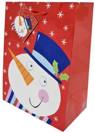 Пакет подарочный Winter Wings N13473 180х230х98 мм росмэн пакет подарочный маша новогодняя 230 180 100