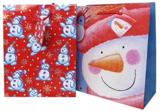 Пакет подарочный Winter Wings N13758 180х230х98 мм в ассортименте росмэн пакет подарочный маша новогодняя 230 180 100