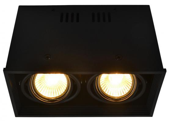 Потолочный светильник Arte Lamp Cardani A5942PL-2BK потолочный светильник cardani a5942pl 2wh arte lamp 1183693