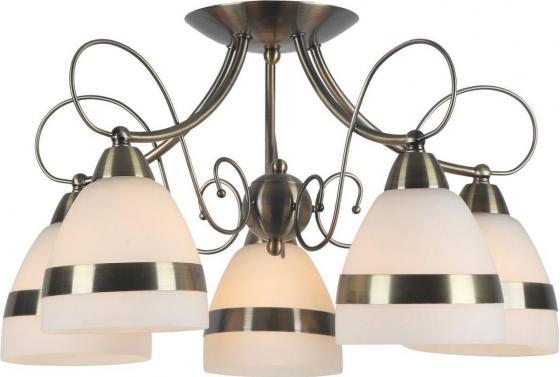 Купить Потолочная люстра Arte Lamp 55 A6192PL-5AB