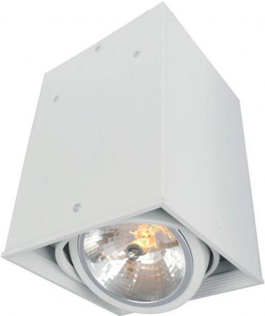 Потолочный светильник Arte Lamp Cardani A5936PL-1WH arte lamp светодиодный спот arte lamp cardani a1618pl 1wh