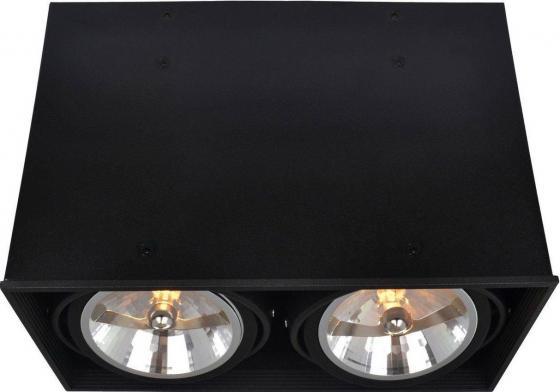 Потолочный светильник Arte Lamp Cardani A5936PL-2BK arte lamp встраиваемый светодиодный светильник arte lamp cardani a1212pl 1wh