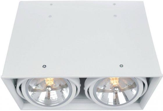 Потолочный светильник Arte Lamp Cardani A5936PL-2WH потолочный светильник cardani a5942pl 2wh arte lamp 1183693