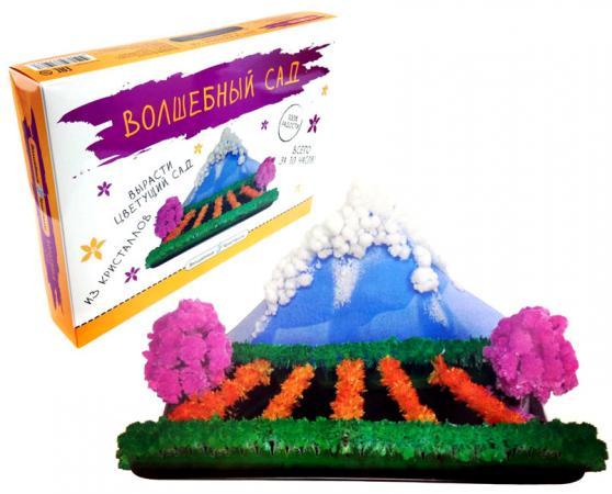 Набор для опытов Волшебные кристаллы Волшебный сад CD-018B-1 бумбарам волшебные кристаллы синяя елочка