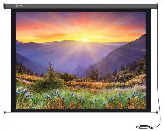 Купить Экран настенный моторизированный Cactus Professional Motoscreen CS-PSPM-149X265 149 x 265 см