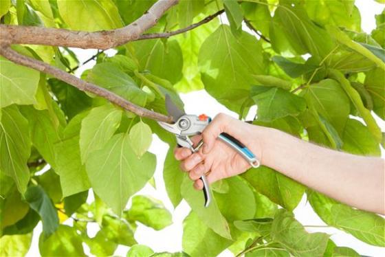Секатор контактный Gardena B/L большой серый/черный 08906-20.000.00 секатор gardena premium bp 50