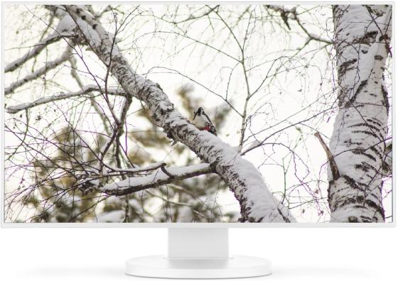 Монитор 23.8 NEC MultiSync EX241UN черный IPS 1920x1080 250 cd/m^2 6 ms HDMI DVI DisplayPort VGA Аудио USB монитор 24 nec multisync e243wmi silver white ips led 1920x1080 5ms vga dvi displayport usb