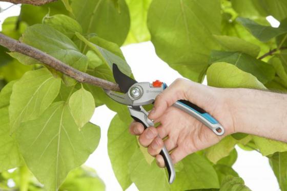 Секатор контактный Gardena B/L большой серый/черный 07726-20.000.00 секатор gardena premium bp 50