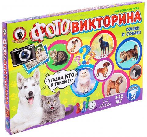Настольная игра развивающая Русский Стиль Фотовикторина - Кошки и собаки  3436 play doh игровой набор магазинчик домашних питомцев