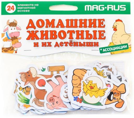 Магнитная игра развивающая MAG-RUS Ассоциации - Домашние животные и их детеныши NF1013 вера мельник домашние животные и их детеныши