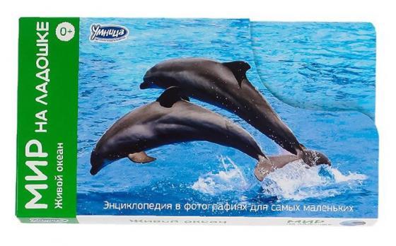 Развивающие карточки Умница Мир на ладошке 1.5. ЖИВОЙ ОКЕАН 2006 большой плакат живой мир океана живой мир саванны 1522200000172