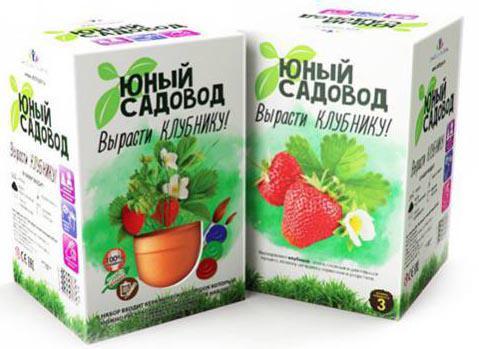 Игровой набор Инновации для детей Инновации для детей Юный садовод Вырасти клубнику 402