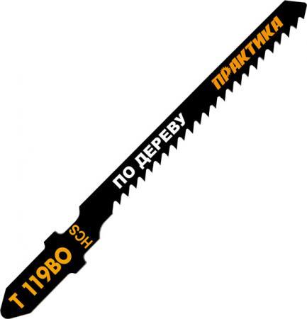 Лобзиковая пилка Практика T119BO HCS 2шт 034-496 недорго, оригинальная цена