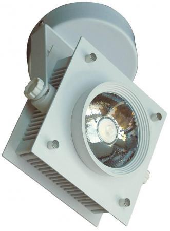 Светодиодный спот Favourite Projector 1769-1U