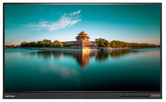 Монитор 23 Lenovo ThinkVision T2364t черный IPS 1920x1080 250 cd/m^2 7 ms HDMI DisplayPort VGA Аудио USB бра mantra ninette 1924