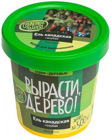 Набор для выращивания ВЫРАСТИ ДЕРЕВО Ель канадская голубая zk-048 наборы для выращивания вырасти дерево набор для выращивания розмарин