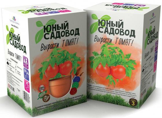 Набор для выращивания Инновации для детей Юный садовод - Вырасти томат 407 наборы для выращивания растений вырасти дерево набор для выращивания ель канадская голубая