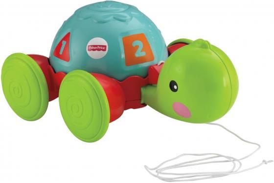 Развивающая игрушка Fisher Price Обучающая черепашка на колесиках Y8652 каталки fisherprice каталка обучающая черепашка на колесиках