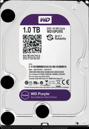 Жесткий диск 3.5 1Tb 5400rpm 64Mb cache Western Digital Purple SATAIII WD10PURZ жесткий диск 4tb western digital purple wd40purz
