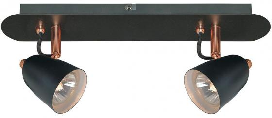 Спот Lussole Loft LSP-9852 lussole loft потолочный спот lussole loft lsp 9821