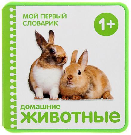 Развивающие книжки Мозаика-Синтез Мой первый словарик Домашние животные 0661-1