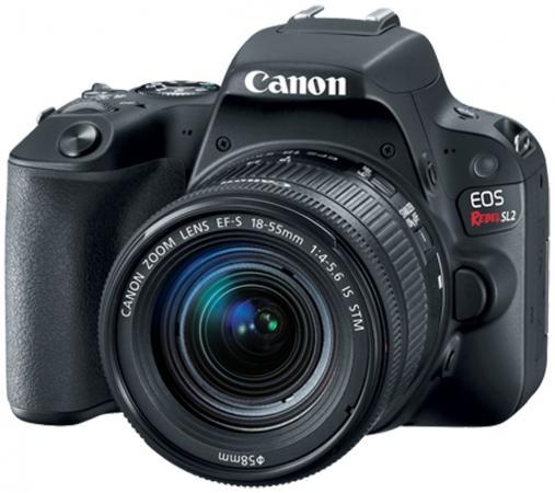 купить Зеркальная фотокамера Canon EOS 200D EF-S 18-55mm 24Mp черный 2250C011 недорого