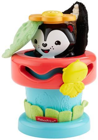 Развивающая игрушка Fisher Price Цветочный горшок DFP91