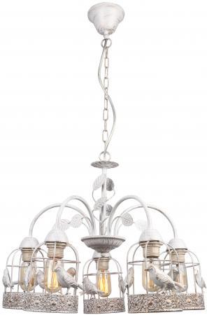 Подвесная люстра Arte Lamp Cincia A5090LM-5WG