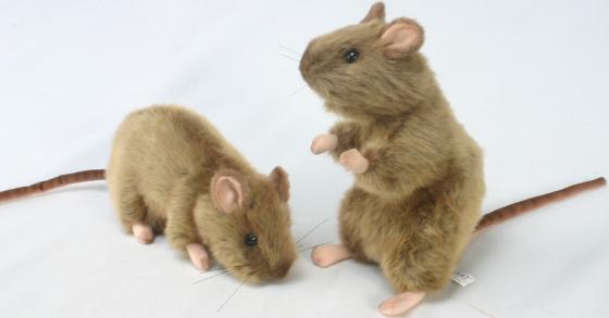 Мягкая игрушка крыса Hansa 2794 25 см серый искусственный мех
