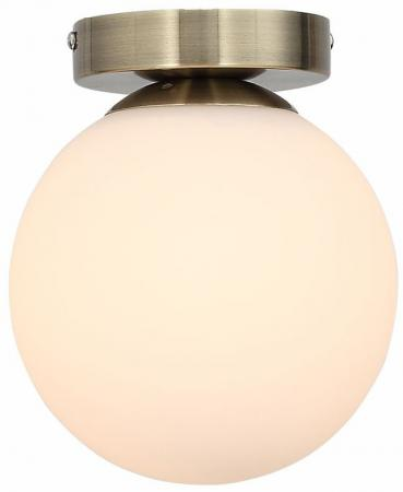 Настенно-потолочный светильник ST Luce Acini SL717.301.01 цена