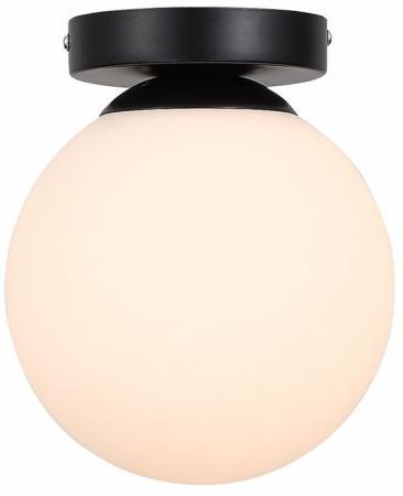 Настенно-потолочный светильник ST Luce Acini SL717.401.01 цена