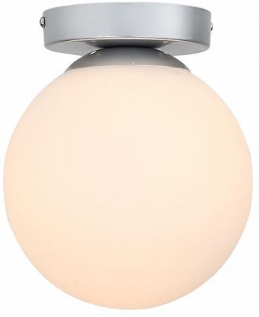 Настенно-потолочный светильник ST Luce Acini SL717.501.01 цена