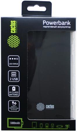 Купить со скидкой Портативное зарядное устройство Cactus CS-PBAS282 5000мАч черный серый