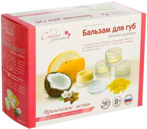 купить Бальзам для губ Аромафабрика Тропические мечты С1014 по цене 210 рублей