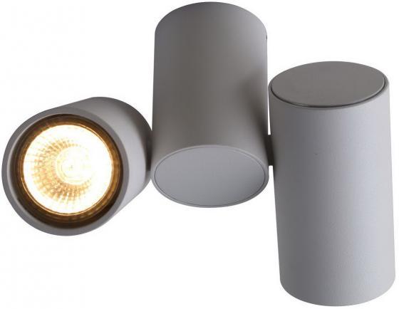 Потолочный светильник Divinare Gavroche 1354/03 PL-2
