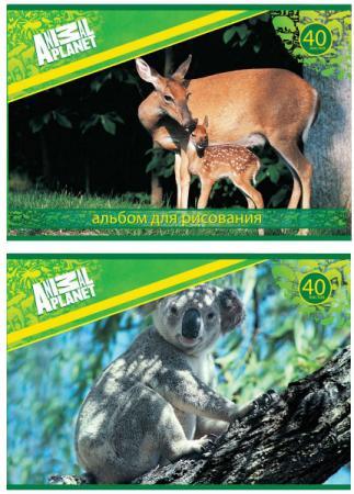 Альбом для рисования Action! Animal Planet A4 40 листов AP-AA-40 в ассортименте