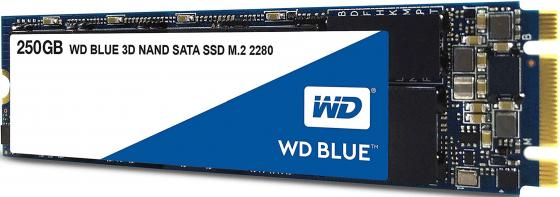 Твердотельный накопитель SSD M.2 250 Gb Western Digital Digital Blue WDS250G2B0B Read 550Mb/s Write 525Mb/s 3D NAND TLC цена и фото